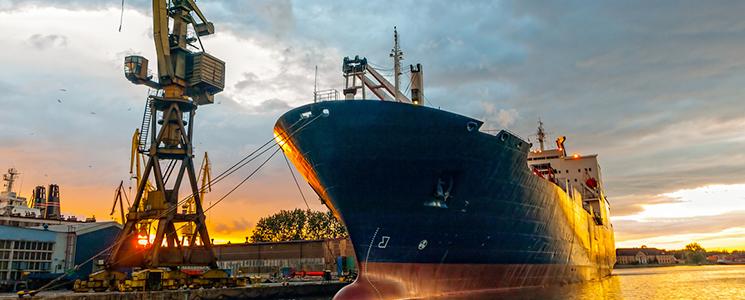 Professional Shipbuilding